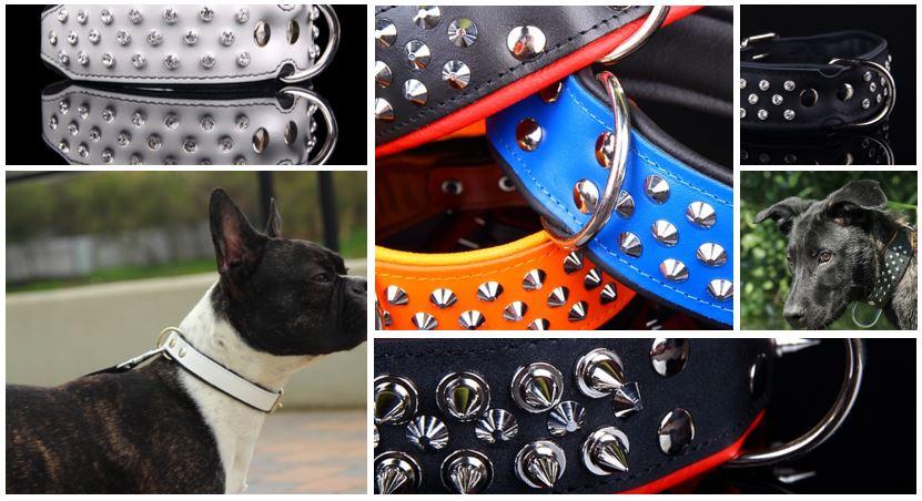 stoere halsbanden voor honden