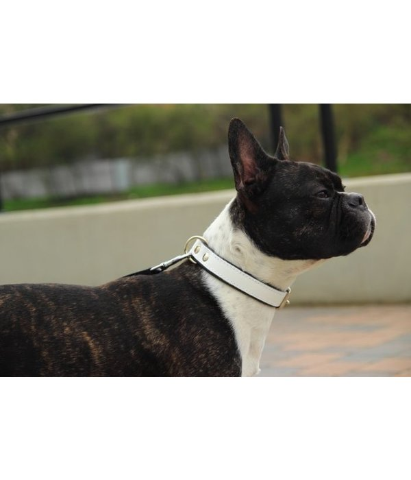 Badass collars for dogs