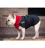 Chilly Dogs GREAT WHITE NORTH WINTER COAT- Bulls / BROAD and BURLY