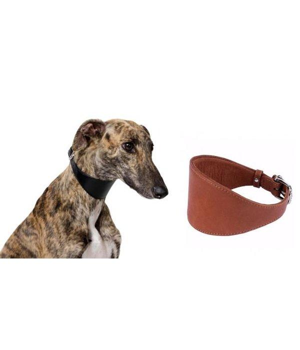 COLLAR SOFT Sighthound