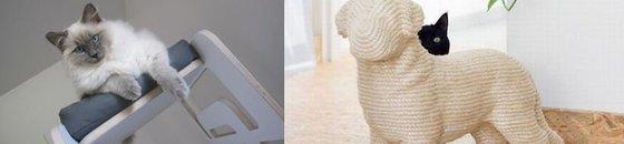 Design Krabpalen en klimmeubels