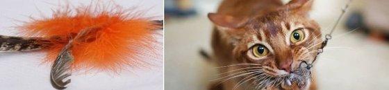 Cat Rod Tabby Tijger - Purrs - Profeline