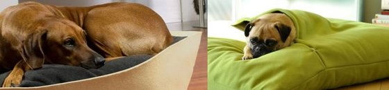 Orthopedische Kussens & Manden, Pet-Interiors