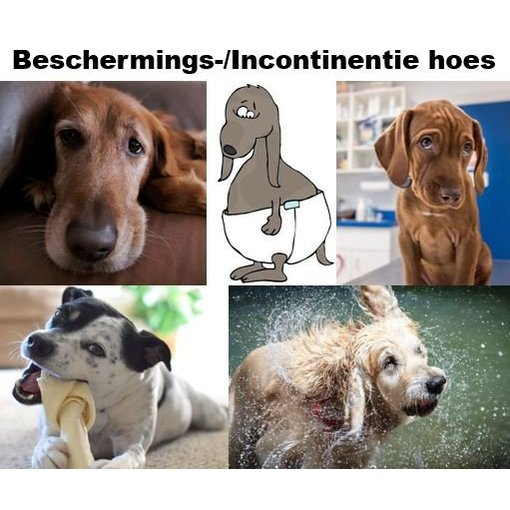 pet-interiors Protection-Incontinence cover