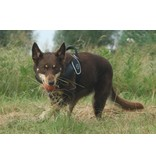 Tre Ponti Primo dog harness black