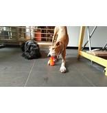 Bionic Dog Toy Bone