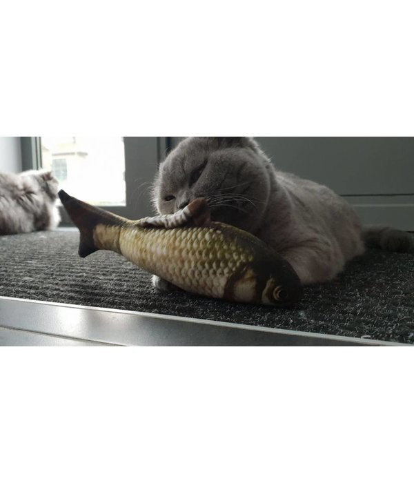Tabby Tijger Cuddle FISH refillable SALMON or CARP (mix)