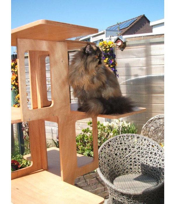 OUTDOOR CATTUS Climbing Tree