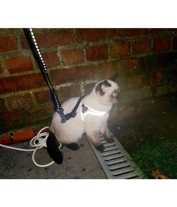 Tre Ponti Liberta Fluoro Wit (special edition) voor katten en hondjes