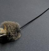 Tabby Tijger Hare Teaser