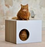 Cat-on Phredia