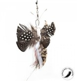 Profeline Exotic Butterfly