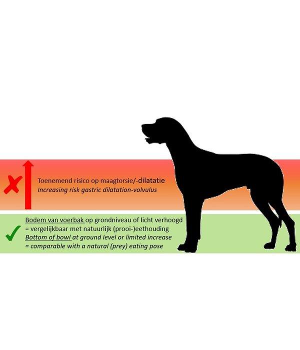 INFO: Wel of geen hoge voerbak voor grote honden? En wat verstaan we onder 'hoge voerbak'?