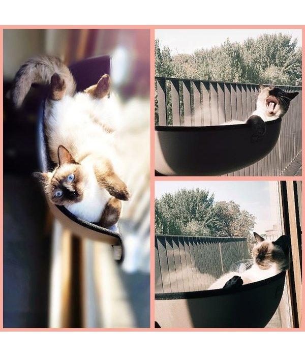Window Bed Kitty Sill - Hangmand Kat