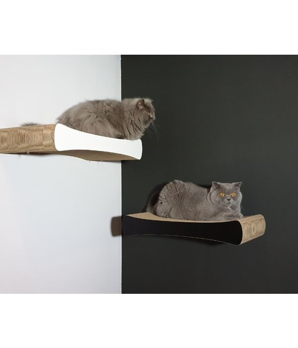 Cat-on Tablet Wall