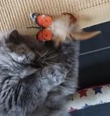 Fligo Vlinder