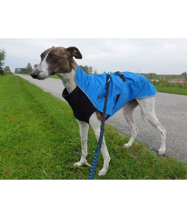 Chilly Dogs Rain Slicker - Harbour Slicker REGENJAS - Windhonden / Long & Lean rassen