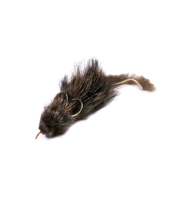 Tabby Tijger Ratatouille