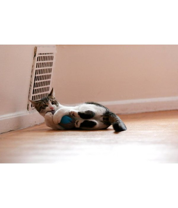 Doc & Phoebe's Single Indoor Hunting Cat Feeder