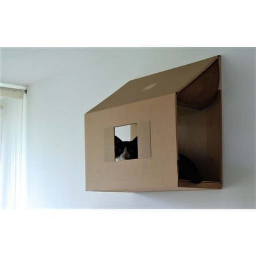 Catroom Loft Wall Box