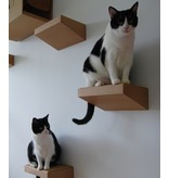 Catroom Wall Steps