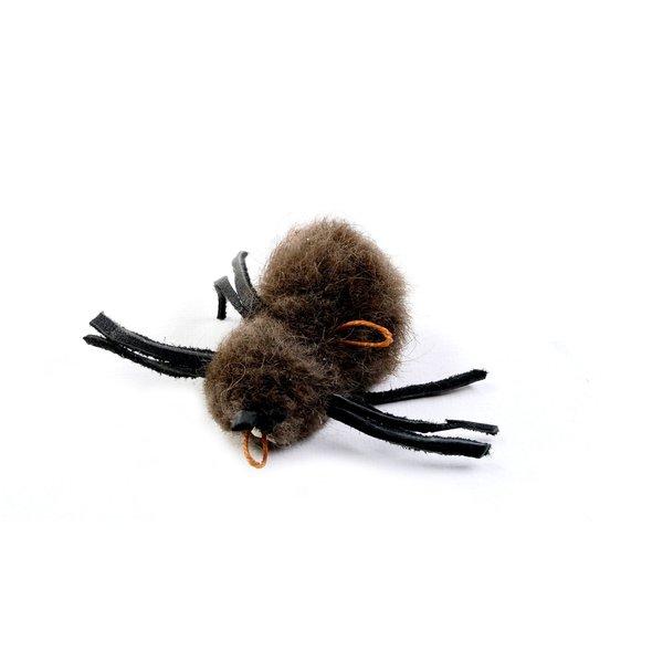 Buffalo Spider