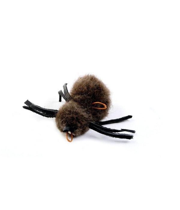 Tabby Tijger Buffalo Spider