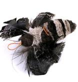 Tabby Tijger Moth (Nachtvlinder)