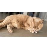 Tabby Tijger PurrFect Stinky (2 stuks, hervulbaar) kattenkruid, valeriaan of matatabi