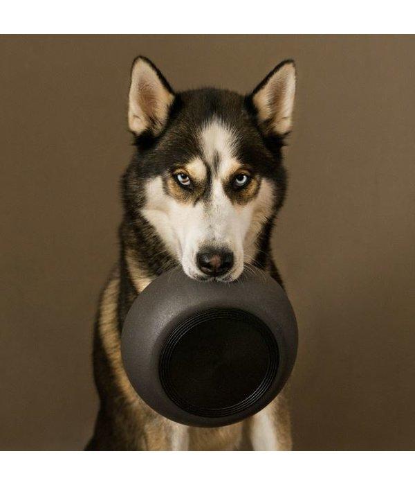 District 70 BAMBOO Dog Bowl