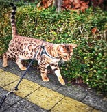 Tre Ponti Liberta cat harness