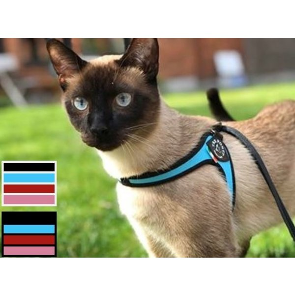 Liberta cat harness