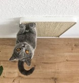 Wall Scratcher Lucy