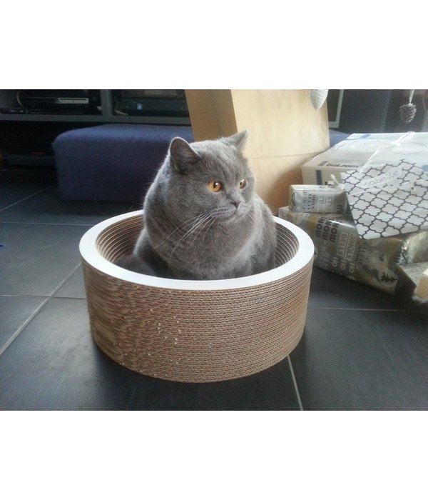 Cat-on La Coupe (2 maten)
