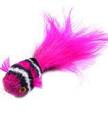 Tabby Tijger Neon fish (Neonvisje)