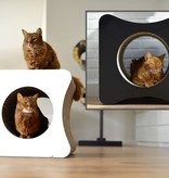Cat-on Le Cube