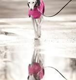 Chilly Dogs Harbour Slicker REGENJAS - Windhonden / Long & Lean rassen