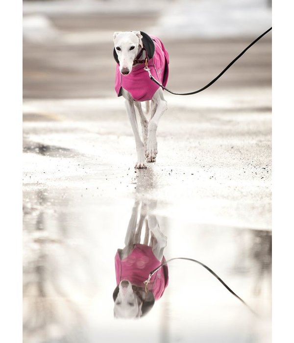 Chilly Dogs Harbour Slicker - Greyhound / Long & Lean rassen