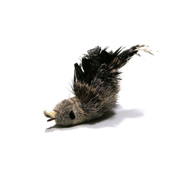 Woodpecker (Specht)