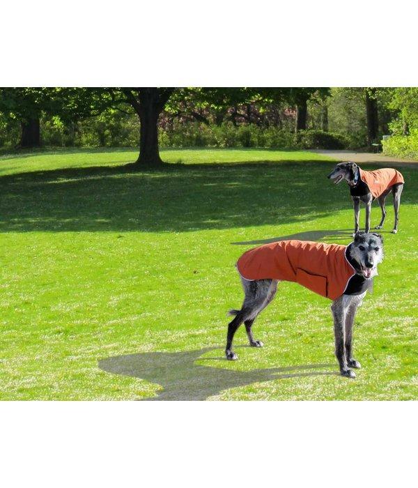 Chilly Dogs TRAIL BLAZER - Windhonden / Long & Lean rassen (model met borstband, einde reeks)
