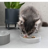MiaCara Fresco and Piatto Cat Bowls