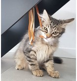 Tabby Tijger Leather Tassel