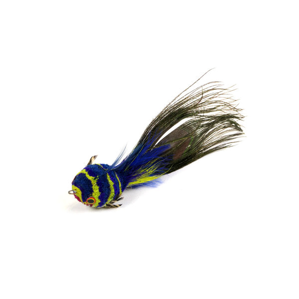 Rainbow Fish (Regenboogvisje)