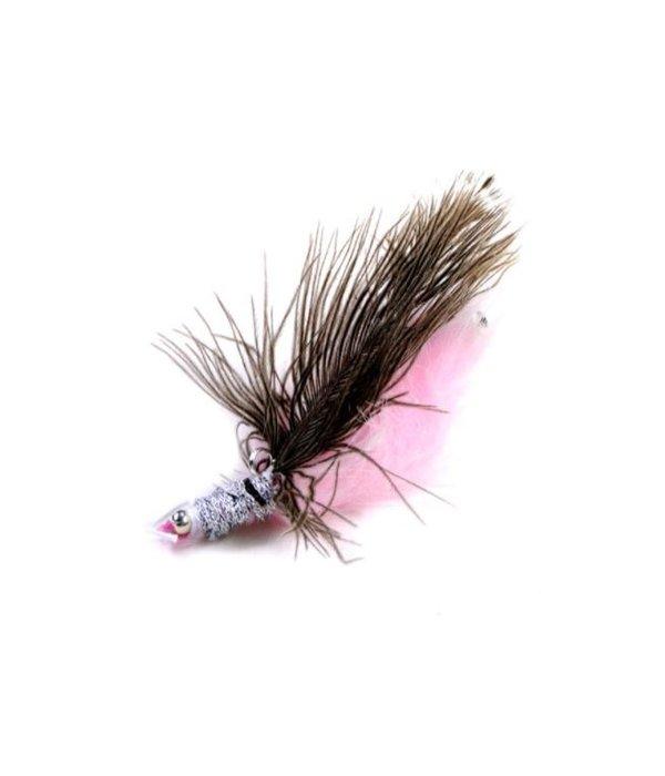 Tabby Tijger Funky Shrimp