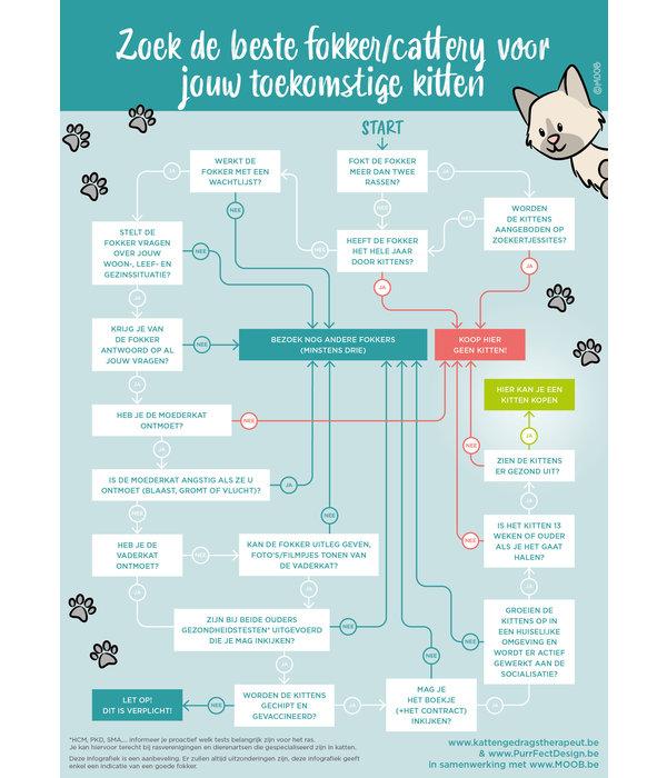 INFO: Hoe kies je een goede fokker/cattery voor een kat?