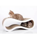 Cat-on ONLINE Package Deal: Singha Medium + Large