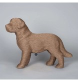 DOG Scratchpost PUP Brown