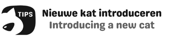 Nieuwe kat introduceren