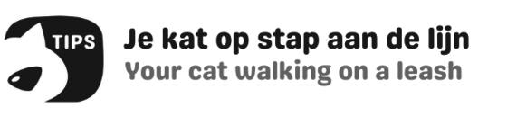 Met uw kat op stap aan de lijn