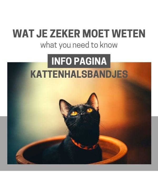 Info Pagina: Halsbandje voor katten... wat je zeker moet weten!